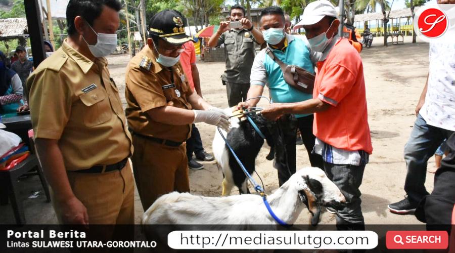 Photo of Bupati Gorut Serahkan Bantuan Ternak Kambing Dan Ayam Kepada Masyarakat Di Atinggola