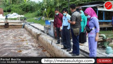 Pemkab Gorontalo Warning PT. Royal Coconut